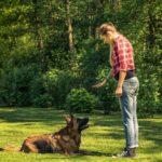 Educatrice chien